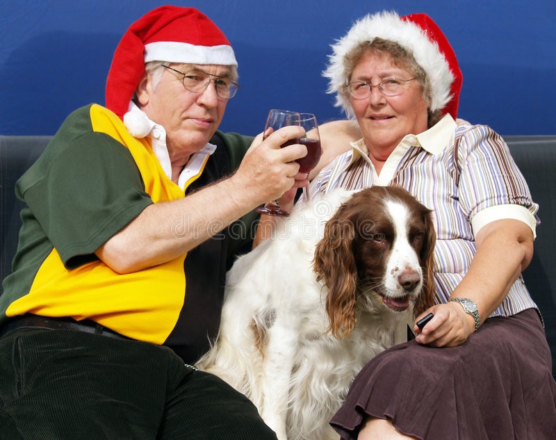 Couples de Noël image stock