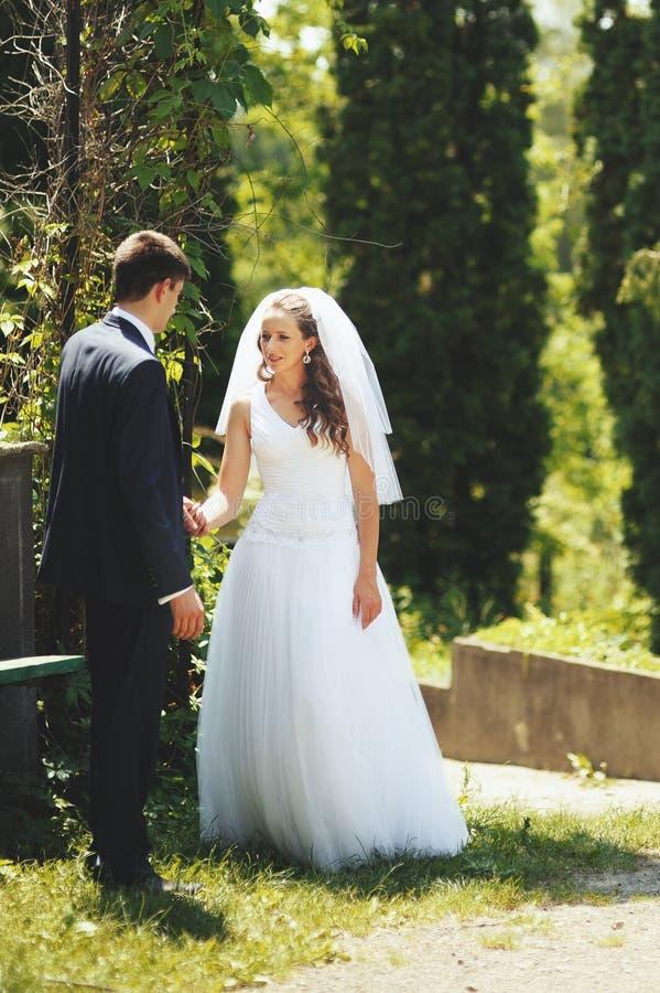 Couples de nouveaux mariés ensemble. images stock