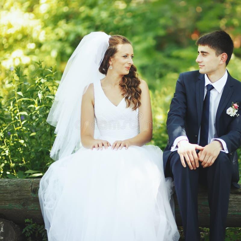 Couples de nouveaux mariés ensemble. photos libres de droits