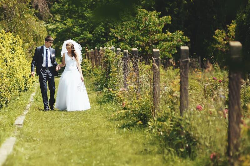 Couples de nouveaux mariés ensemble. photos stock