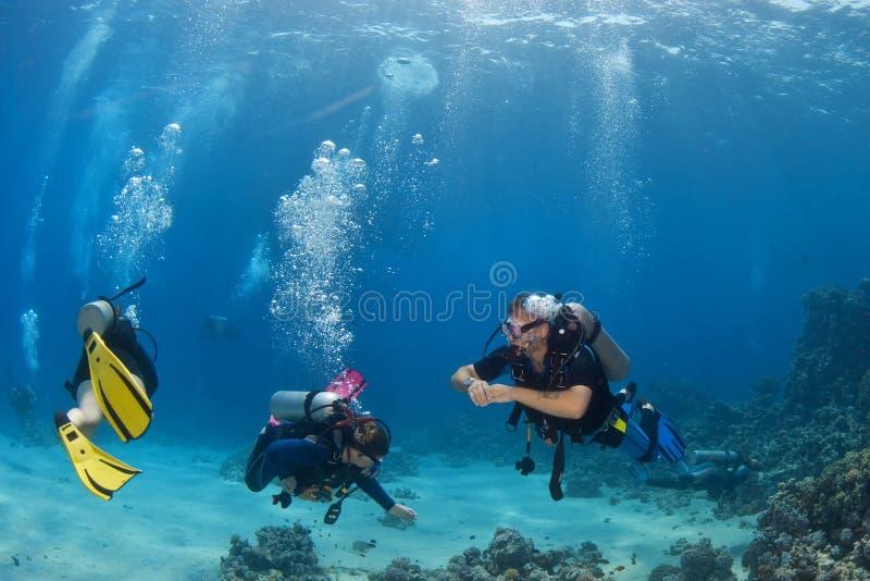 Couples de plongeur sur le récif photographie stock