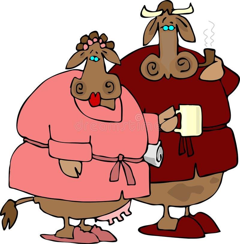 Couples de vache illustration stock