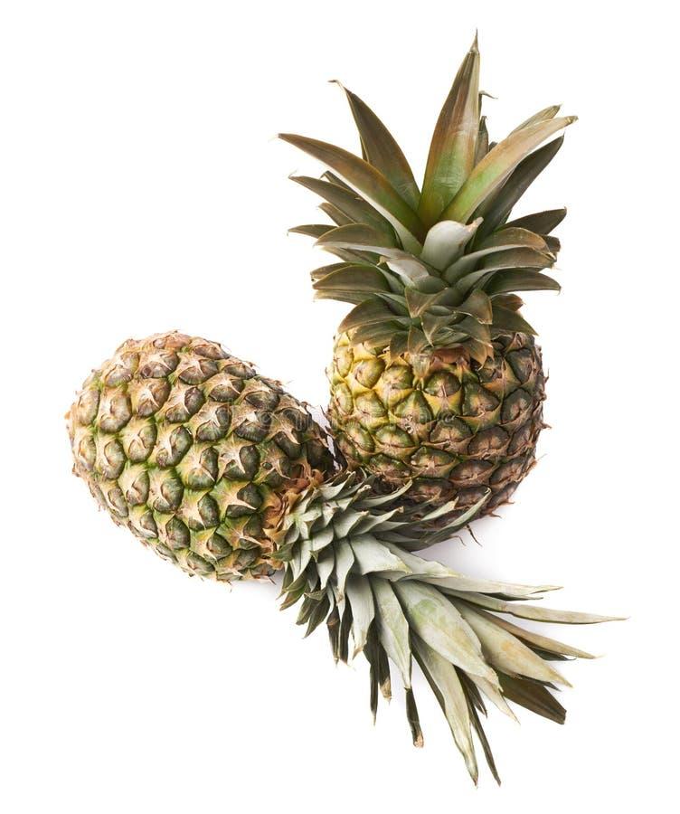 Couples des ananas entiers d'isolement au-dessus du fond blanc image libre de droits
