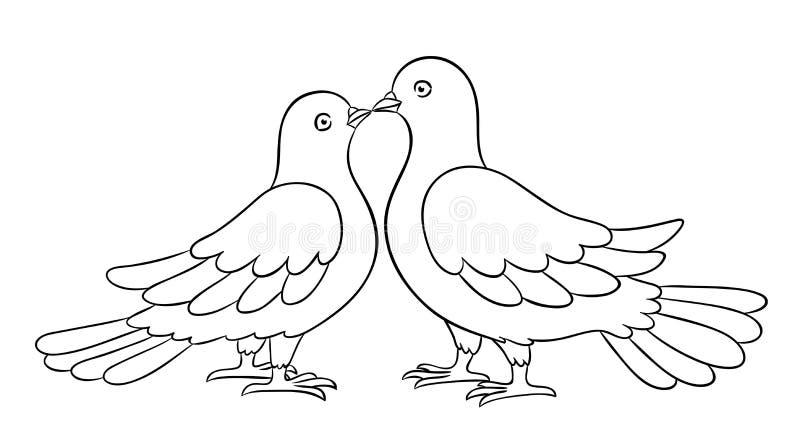 Couples des colombes embrassant - illustration de vecteur de countour illustration libre de droits