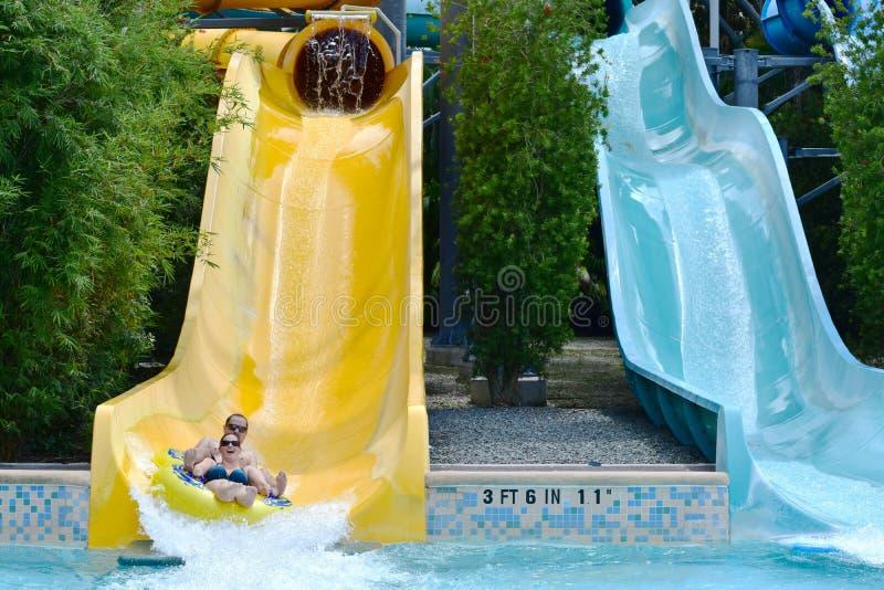 Couples drôles appréciant le tour de l'eau de glissière au parc aquatique dans la région internationale d'entraînement photographie stock