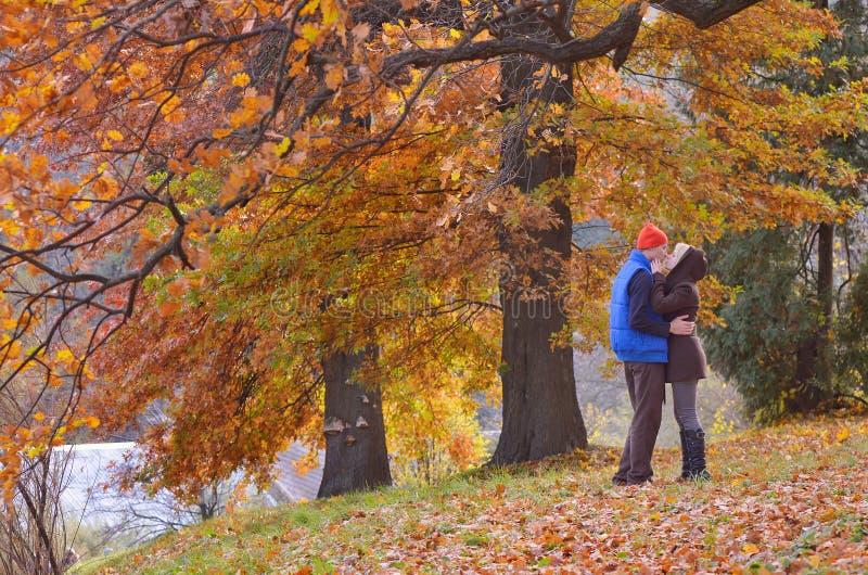 Couples en parc d'automne images libres de droits
