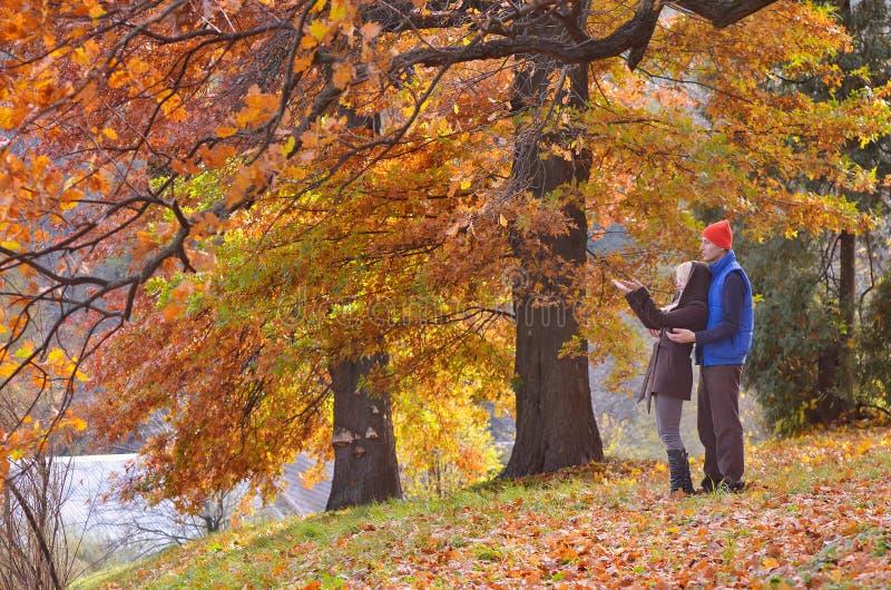 Couples en parc d'automne images stock