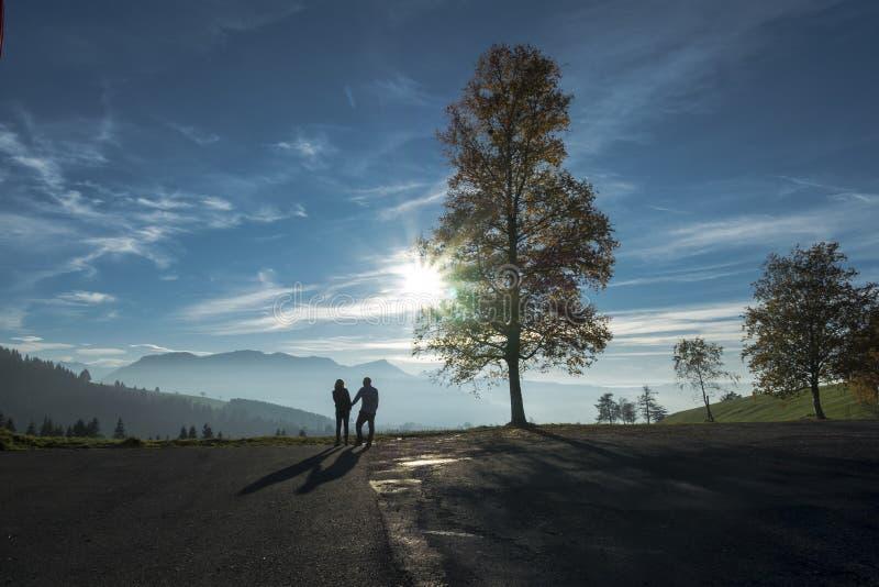 Couples hétérosexuels tenant des mains en silhouette de nature photographie stock