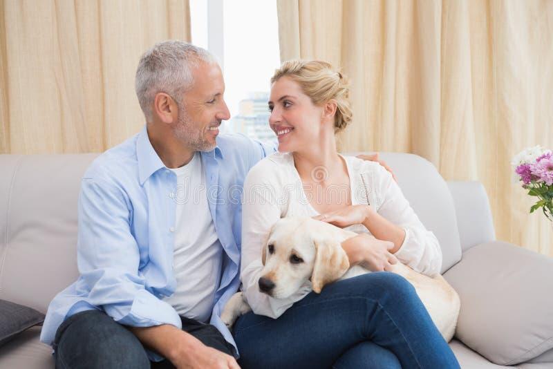 Couples heureux caressant avec le chiot sur le sofa photos libres de droits