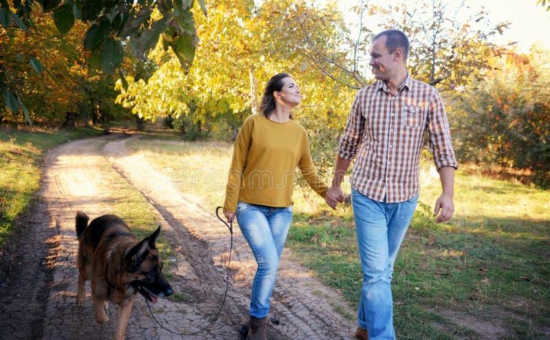Couples heureux d'amour marchant en parc avec le chien de berger allemand, tenant des mains et se regarder image stock