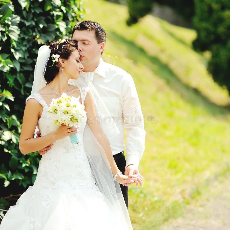 Couples heureux de mariage images libres de droits
