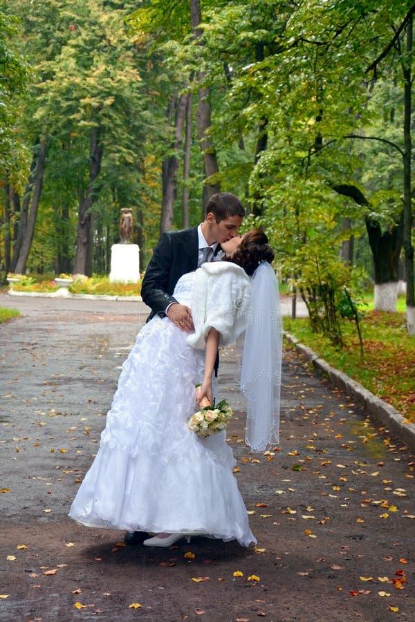 Couples heureux de mariage Jeunes mariés Kissing en parc photographie stock libre de droits