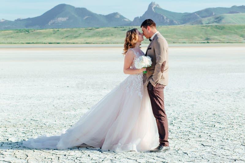 Couples heureux de nouveaux mari?s Beaux jeunes mariés dans un costume photos libres de droits