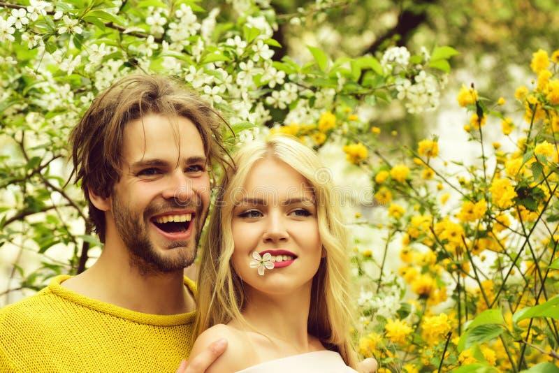 Couples heureux en fleurs de cerise d'amour au printemps image libre de droits