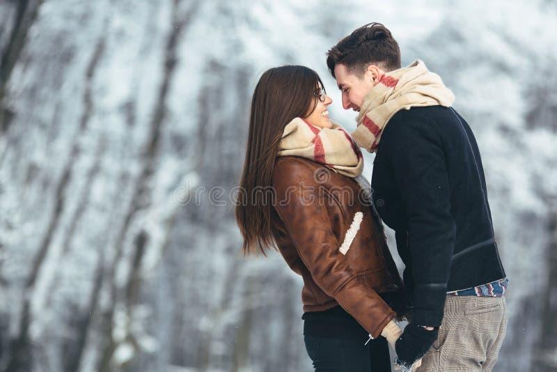 Couples heureux en parc de neige photo libre de droits