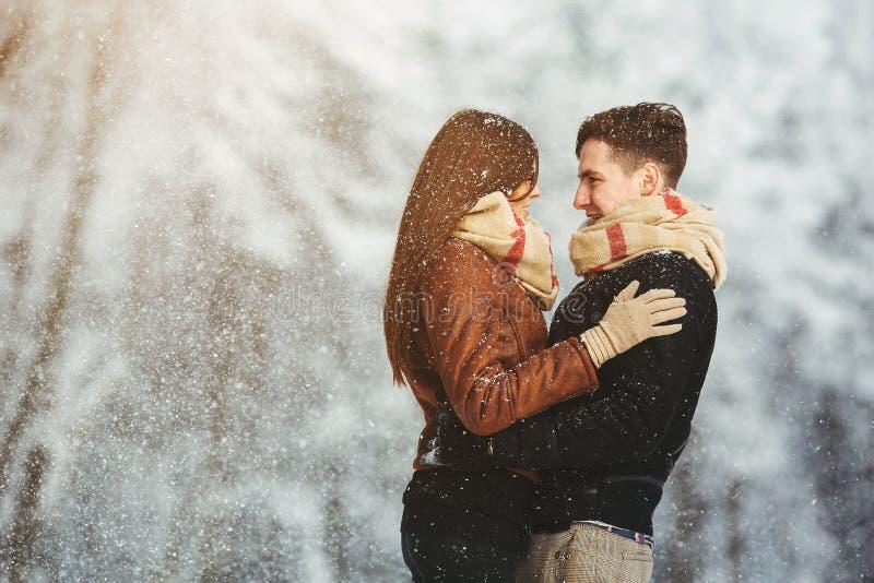 Couples heureux en parc de neige photo stock