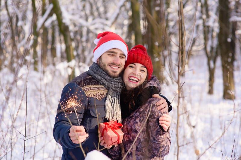 Couples heureux posant avec des bengals au parc d'hiver image stock