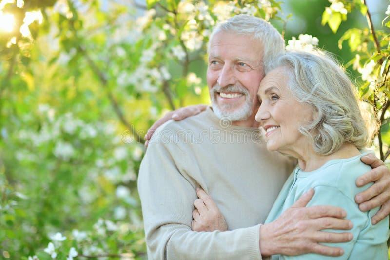 Couples heureux posant en parc images stock