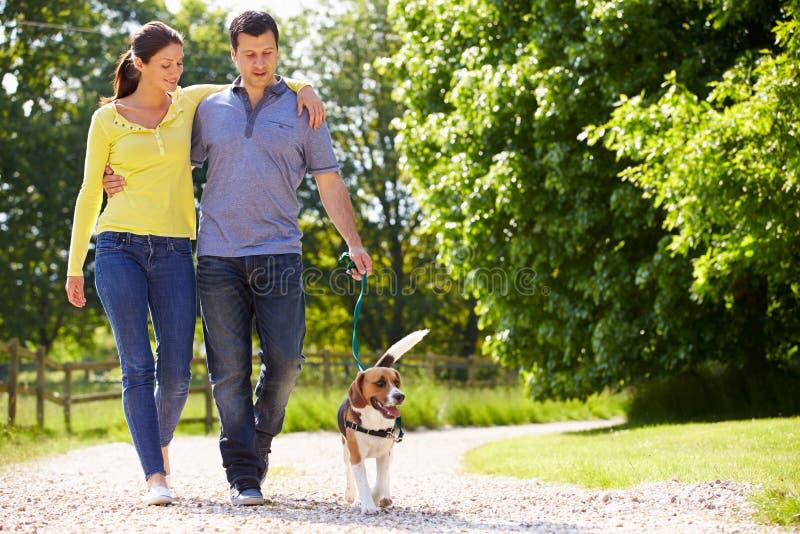 Couples hispaniques prenant le chien pour la promenade dans la campagne images stock