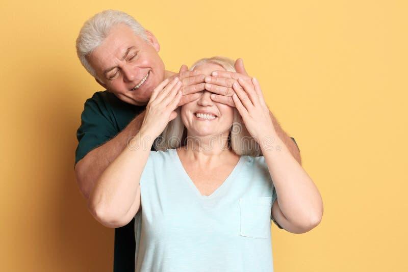 Couples mûrs adorables ayant l'amusement photographie stock libre de droits
