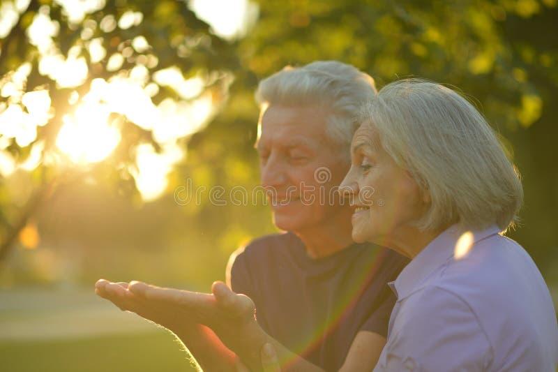 Couples mûrs en parc d'automne photo stock