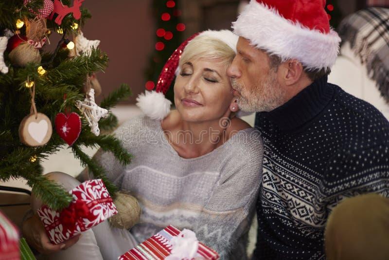 Couples mûrs pendant le Noël photo libre de droits
