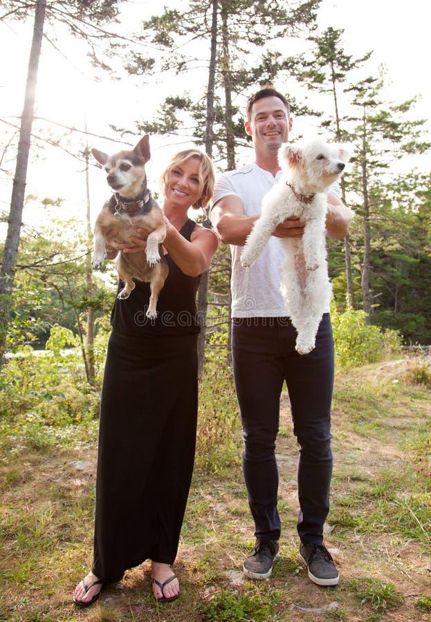 Couples montrant leurs deux chiens image libre de droits
