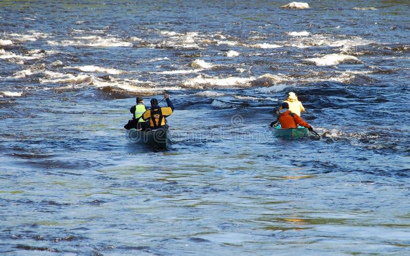 Couples paddling canoes royalty free stock photo