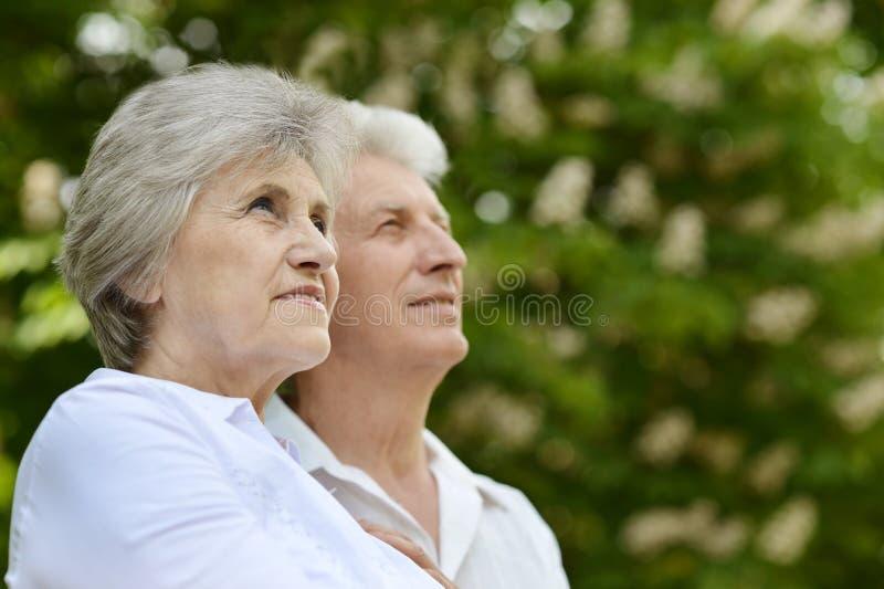 Couples plus anciens heureux images libres de droits