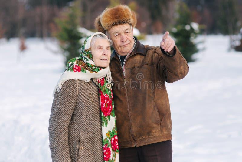 Couples pluss âgé détendant dans l'horaire d'hiver en parc Grand-père heureux et grand-mère marchant ensemble images stock