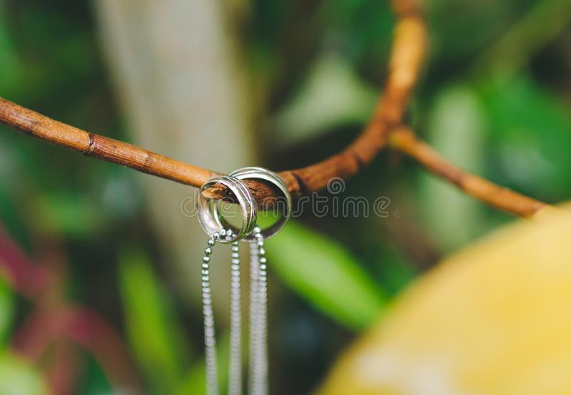 Couples ring hanging in a branch royalty free stock image
