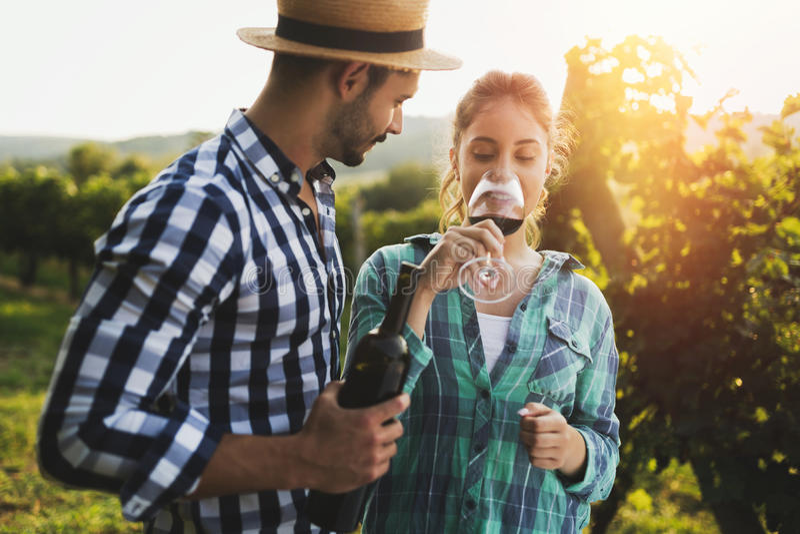 Couples romantiques dans le vignoble avant la moisson photos stock