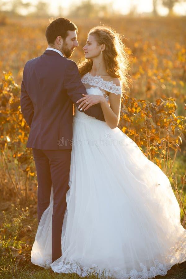 Couples romantiques de conte de fées des nouveaux mariés étreignant au coucher du soleil dans le domaine de vignoble images libres de droits