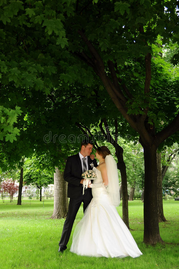 Couples romantiques de mariage photographie stock libre de droits