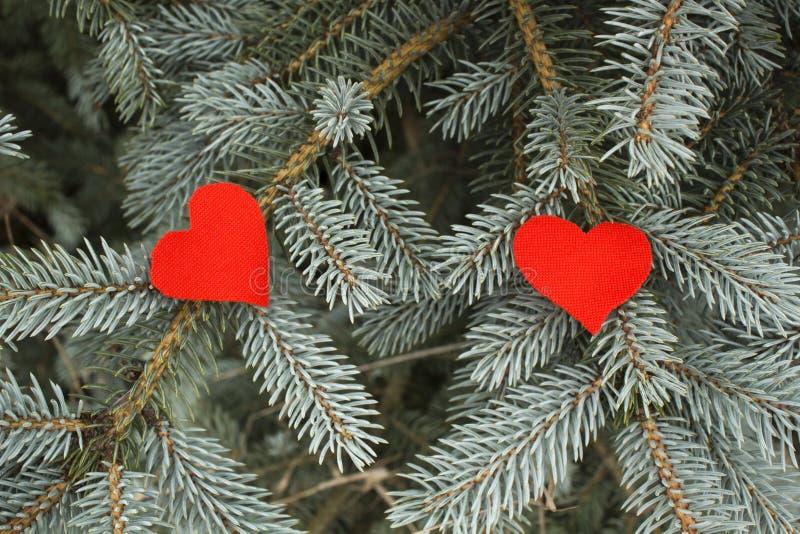 Couples rouges de coeurs de textile sur un fond impeccable bleu de branche photographie stock libre de droits