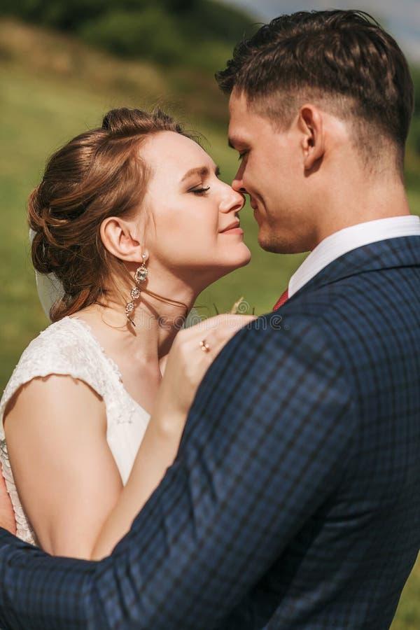 Couples sensuels embrassant sur le pré au jour ensoleillé image libre de droits