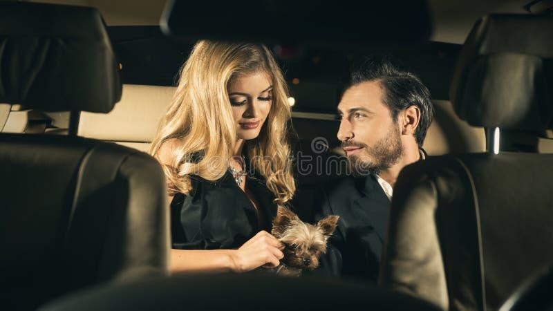 Couples sexy dans la voiture image stock