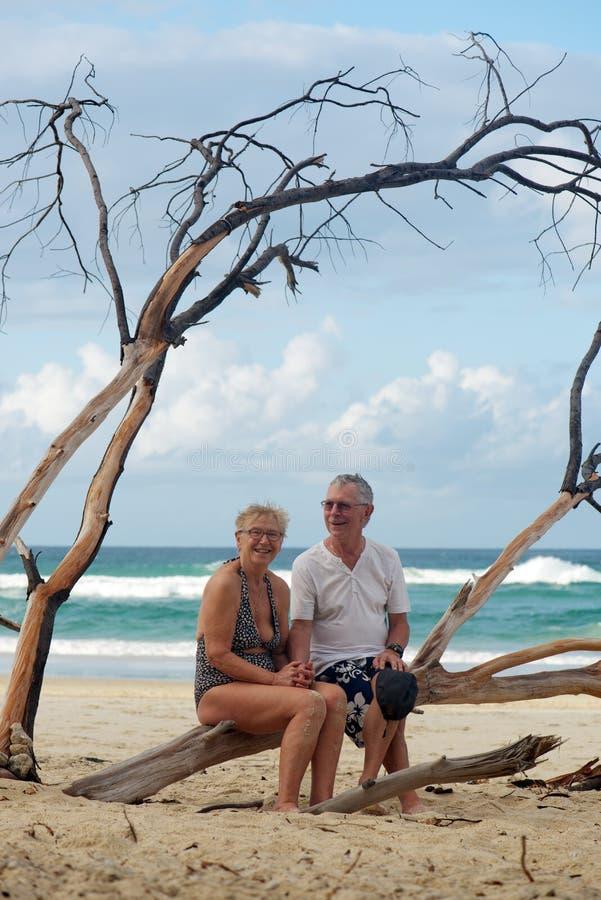Couples supérieurs à la plage photos stock