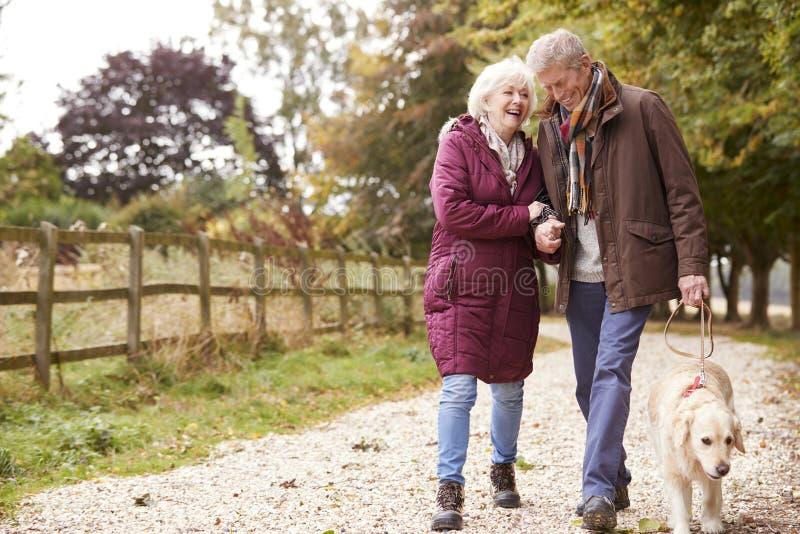 Couples supérieurs actifs sur le chemin d'Autumn Walk With Dog On à travers la campagne images libres de droits