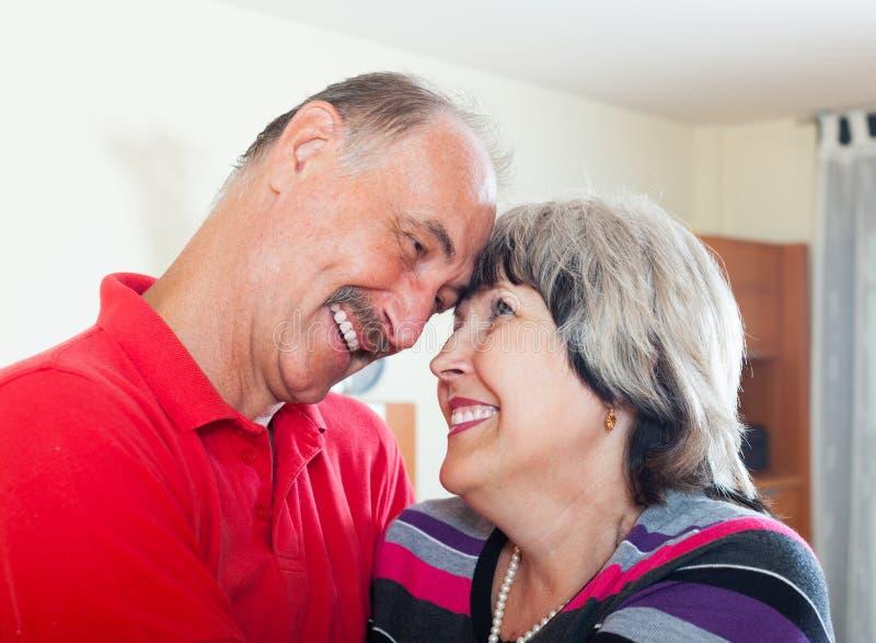 Couples supérieurs affectueux heureux images libres de droits