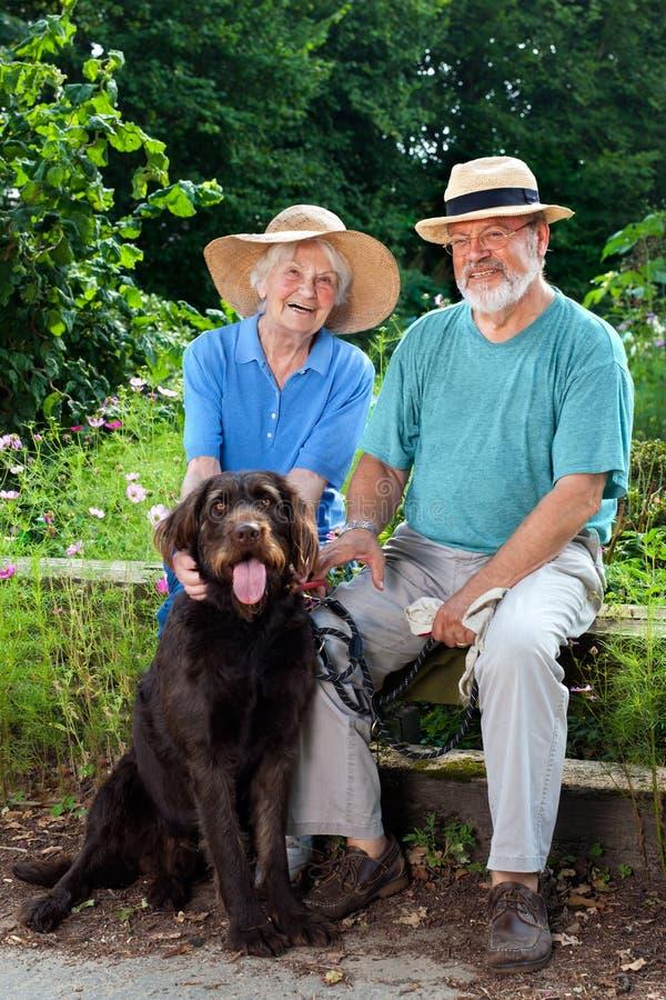 Couples supérieurs au jardin avec leur animal familier de chien photographie stock