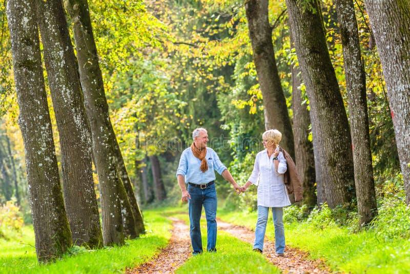 Couples supérieurs ayant la promenade de loisirs en bois images stock