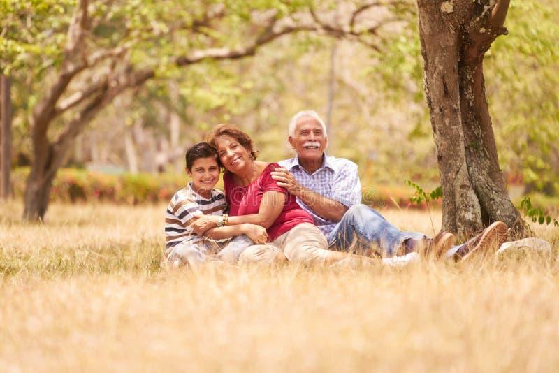 Couples supérieurs de grands-parents étreignant le jeune garçon sur l'herbe images libres de droits
