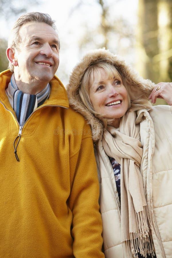 Couples supérieurs dehors en hiver image libre de droits