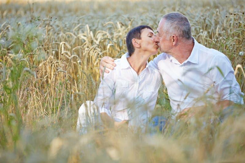 Couples supérieurs embrassant dans le domaine de blé photo libre de droits