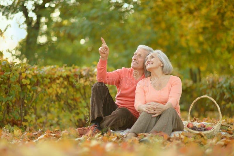 Download Couples Supérieurs En Parc D'automne Photo stock - Image du femelle, hommes: 76081642