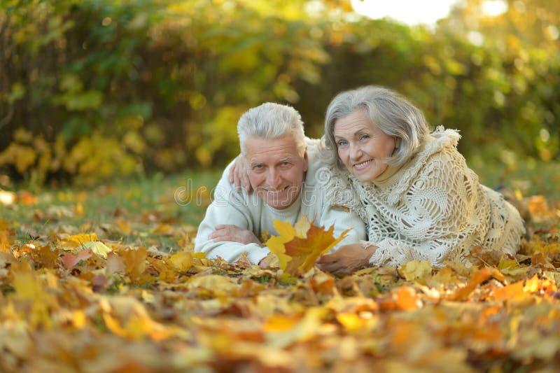Download Couples Supérieurs En Parc D'automne Image stock - Image du lifestyle, sensations: 76081697