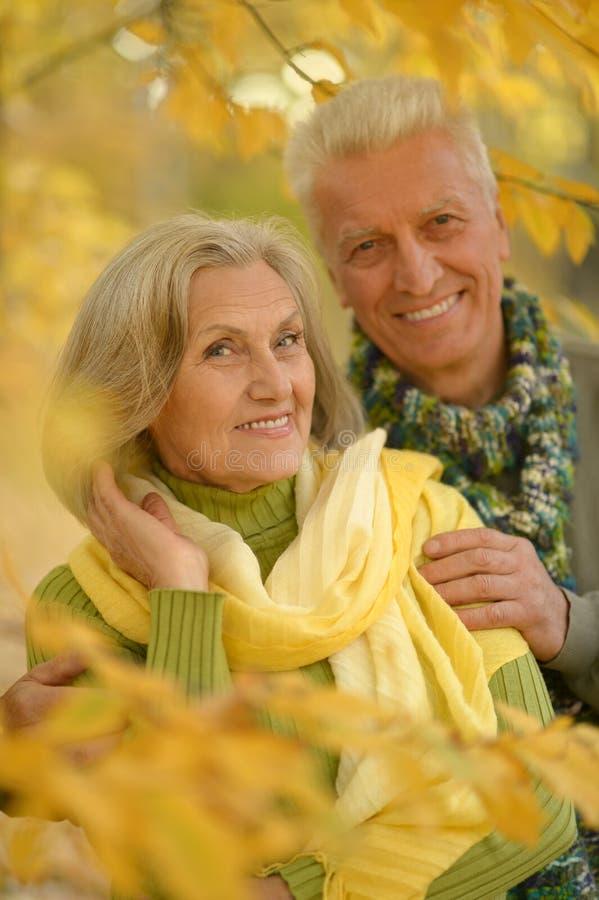Download Couples Supérieurs En Parc D'automne Photo stock - Image du dame, bonheur: 76081996