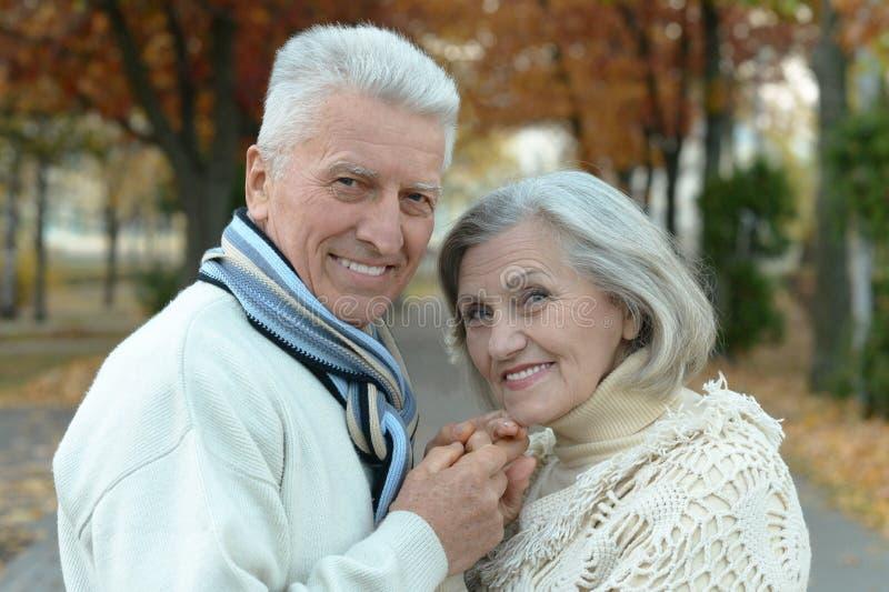 Download Couples Supérieurs En Parc D'automne Photo stock - Image du hommes, people: 76082150