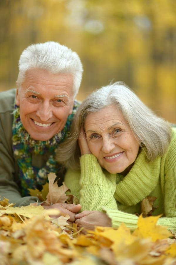 Download Couples Supérieurs En Parc D'automne Photo stock - Image du sensations, relaxation: 76083622